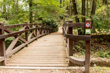 Kreischa, ein Paradies für Wanderfreunde und Ausgangspunkt für unzählige kleinere und größere entlang des bestens ausgebauten Wander- und Kurwegenetzes