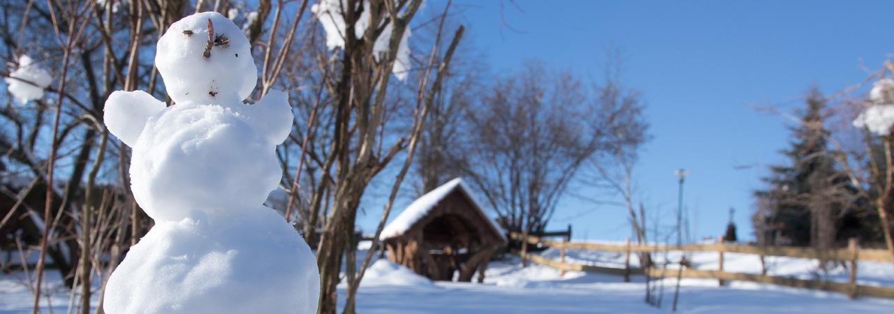 """Winter im Garten des """"Kräuterberg'l"""""""
