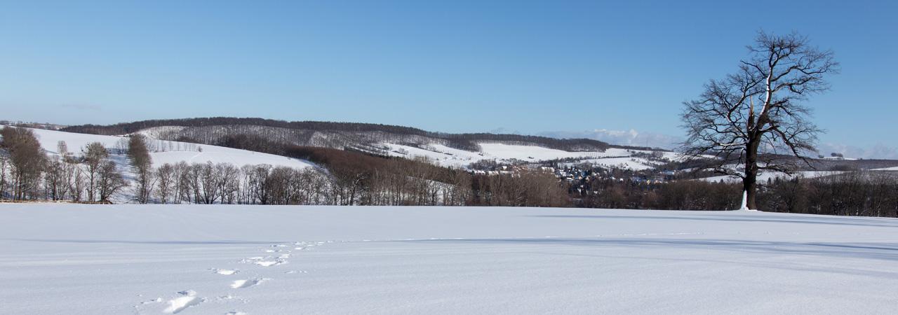 Winter auf den Hängen des Kreischaer Beckens