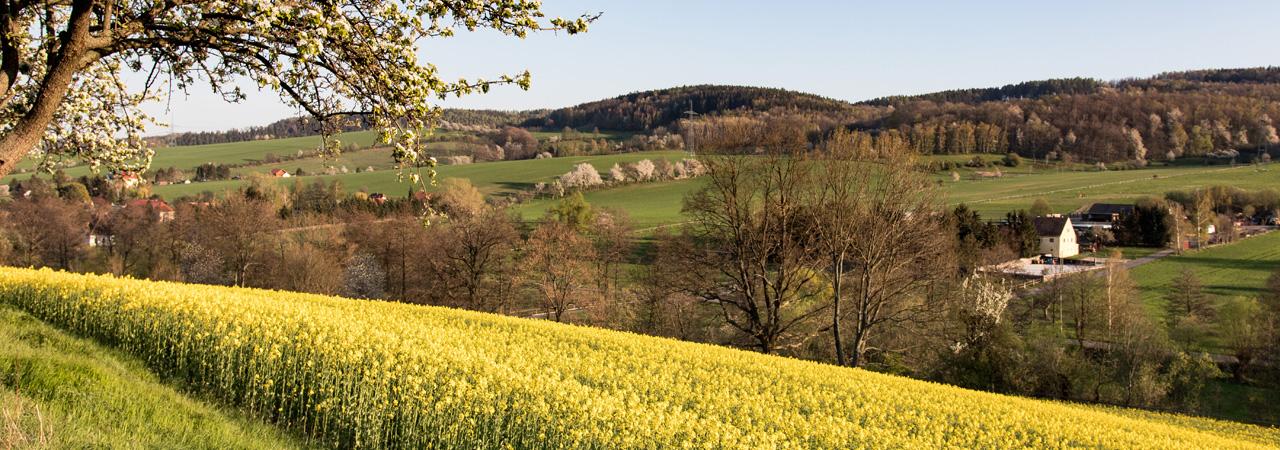 Frühling im Kreischaer Becken und Lockwitztal