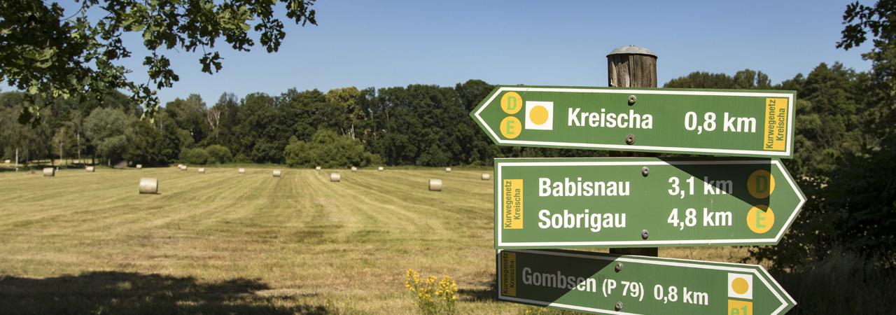 """Das uns umgebende Landschaftsschutzgebiet """"Lockwitztal und Gebergrund"""" ist ein Paradies für Wanderfreunde"""